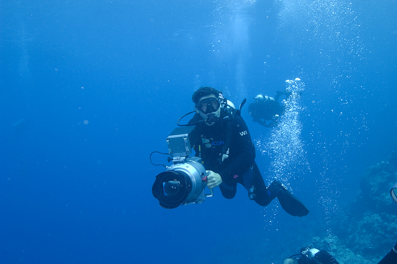 Didier Noirot in action - Shark Reef off the Fijian island of Beqa - Beqa divers