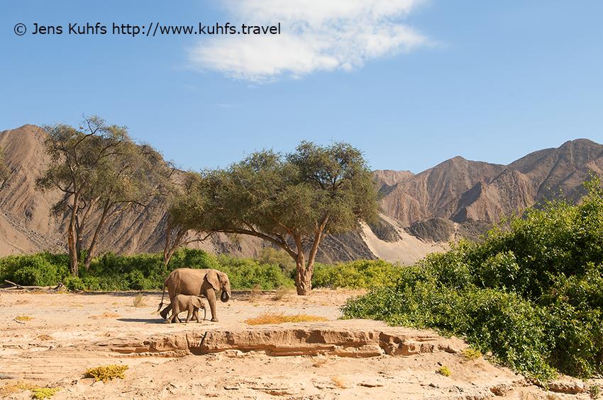Namib Desert, sand dune, Dry Hoanib River, Skeleton Coast, Hoanib Skeleton Coast, Skeleton Coast, Namibia
